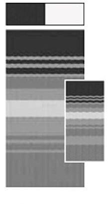 Dune Stripe - Carefree JU188D00 RV Awning Vinyl Fabric 18FT - Black/Gray Dune Stripe With White Weatherguard