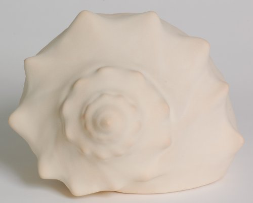Whelk Seashell Cremation Urn (Medium - 130 lbs or ()
