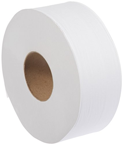 AmazonBasics Professional Economy Jumbo Roll Toilet Tissue for Businesses, 2-Ply, 1,000 Feet per Roll, 12 Rolls