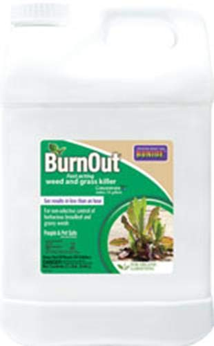 Bonide (BND7466) - Burnout Concentrate, Fast Acting Weed and Grass Killer (2.5 gal.)