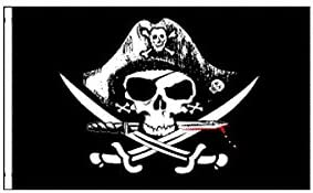 Black Skull Bicycle Safety Flag with Axle Mounting Bracket NEW 5 ft