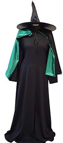 (CL COSTUMES Halloween-Wicked-The Wizard of oz The Wicked Witch of The WEST Fancy Dress Costume - Dress, Cape & Hat - All Ladies Sizes (Ladies)