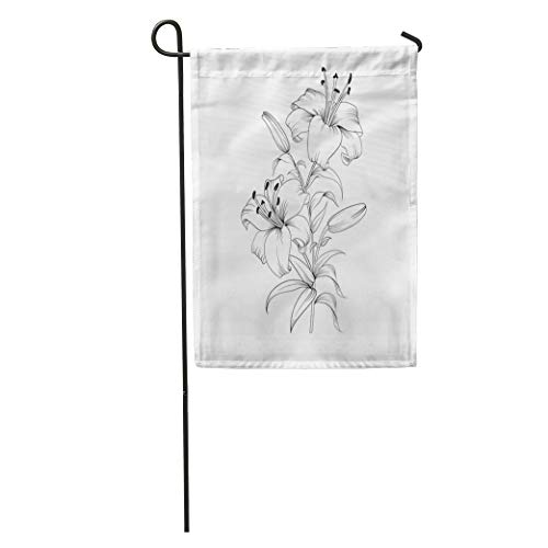 Calla Bordered Lilies (Semtomn Garden Flag Flower White Lily Blooming Outline Lilly Drawing Sympathy Line Botanical Home Yard Decor Barnner Outdoor Stand 28x40 Inches Flag)