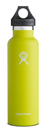 Hydro Flask 24 oz Vacuum Insulated Stainless Steel Water Bottle, Standard Mouth with Loop Cap, Citron