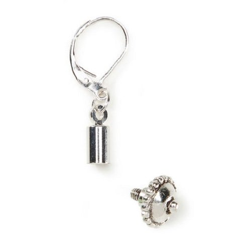 Two Pairs of Interchangeable Drop Earrings for European Style Bead Charms (Interchangeable Earring Beads)
