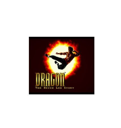 Taka Co 16 Bit Sega MD Game Dragon The Bruce Lee Story 16 bit MD Game Card For Sega Mega Drive For Genesis
