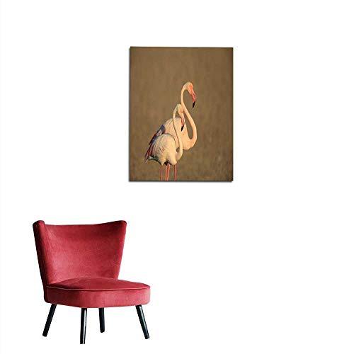 longbuyer Photographic Wallpaper Greater Flamingo (Phoenicopterus roseus) in Dubai United Arab Emirates Mural 24