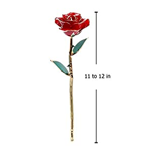DuraRose Authentic Rose with Stand and Love Card, Stem Dipped in 24k Gold - Best Gift for Loves Ones. Ideal for Valentine's Day, Mother's Day, Anniversary, Birthday, (Adorable Red) 4