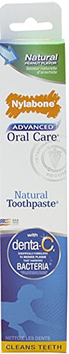 Nylabone Advanced Oral Care 2.5oz Peanut Flavored Natural Dog Toothpaste