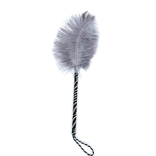 Soft Feather Tickler Sex SM Flirting Toys Paddle Whip for Adult Game Fetish BDSM Sex Products for Couple Women Men by PUMPKIN CARRIAGE