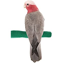 Sweet Feet and Beak Comfort Grip Safety Perch for Birds Patented Perch Keeps Nails and Beak in Top Condition - Safe and Non-Toxic, for Cages – Medium/Green
