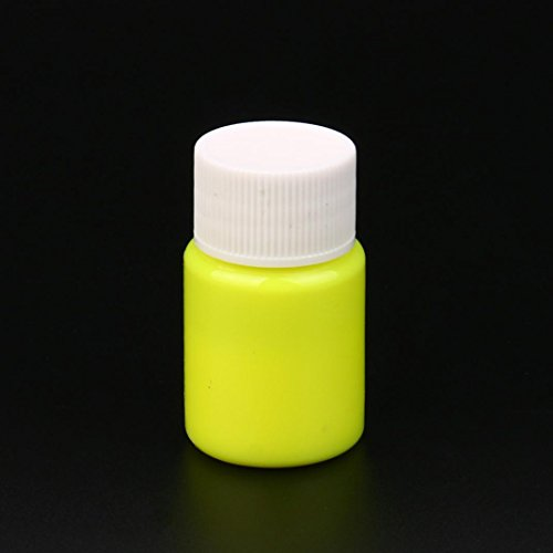 Glow in the Dark Paint, Transer DIY Acrylic Luminous Paint Bright Pigment Party Decoration 20g (E) by Transer (Image #1)