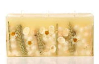 Rosy Rings BEACH DAISY 3-Wick Brick 160 Hour Botanical Scented Candle