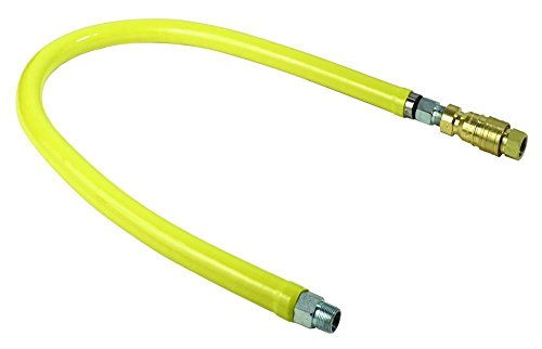 T&S Brass HG-4D-48K Gas Hose with Quick Disconnect by T&S Brass