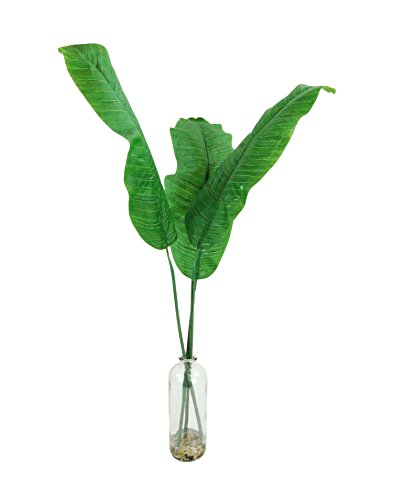 LCG Floral 16W100B Banana Leaf's in A Chunky Glass - Banana Glasses