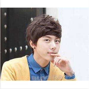 2014 New SH Brand Handsome Boys Wig New Korean Fashion Sexy Short Natural Wigs Men Cosplay Wigs HS