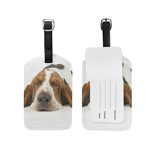 Luggage Tags Basset Hound Travel ID Identifier for People 1 Pack (Tag Luggage Hound Basset)