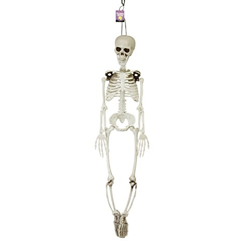 Halloween Haunters 3 Foot Hanging Full Body Skeleton Plastic Prop Decoration - Posable Joints, Scary Human Skull & (Skeleton Chair)
