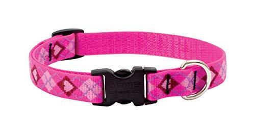 (Dog Collar13-22adj Pylv)