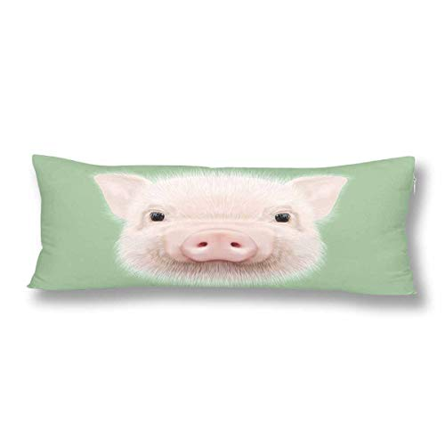 InterestPrint Portrait of Farm Pig Cute Head of Little Piggy Body Pillow Covers Case Protector Rectangle with Zipper 21x60 Twin Sides for Sofa Decorative ()
