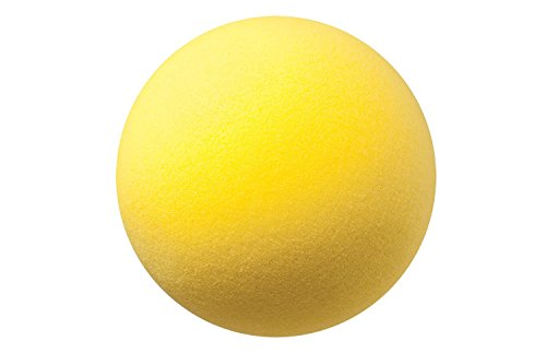 Champion Sports Uncoated Regular Density Foam Ball (8.5-Inch) ()