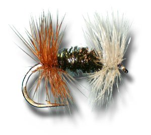 - Renegade Fly Fishing Fly - Size 14 - 12 Pack