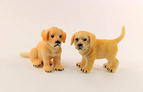 nanguawu 1/12 1/6 Dollhouse Miniature Little Puppy Pet Dog Golden Retriever 2pcs