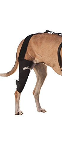 Ohana Dog Knee Brace 1 Pair Wound Healing Loss Stability from Arthritis Size L Supportive Hind Leg Brace Canine Rear Hock Joint Wraps Injury Sprain Protection