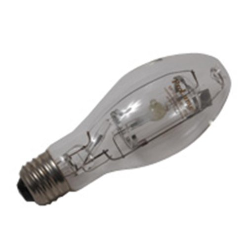 12 Qty. Halco 50W MP ED17 Med PS ProLumeUN2911 M110/O MP50/U/MED/PS 50w HID Pulse Start Clear Lamp Bulb by Halco