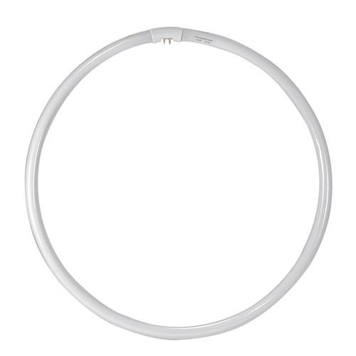 Flashpoint 13 Replacement 50w Ringlight Bulb for Fluorescent Dimmable Ring Light