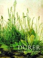 Durer & the Virgin in the Garden (04) by Foister, Professor Susan [Paperback (2004)]