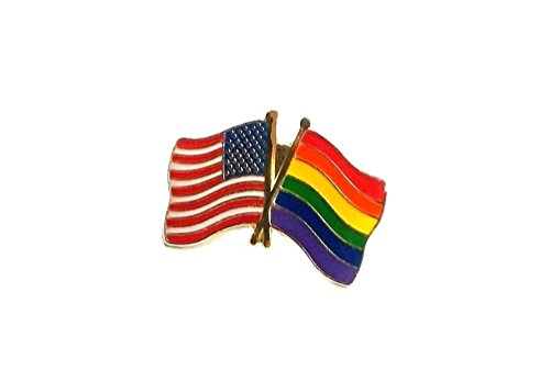 (Lot Of 12 Gay Pride Friendship USA Flag Rainbow Lapel Pins LGBT Gift Support)