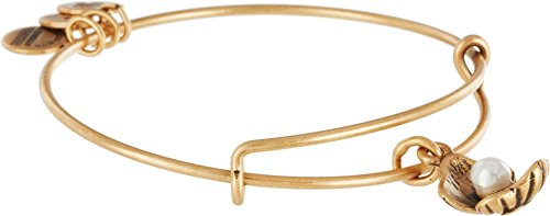 Alex Ani Womens Oyster Bangle