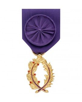 Le Comptoir Des Médailles Médaille Officier de l'Ordre des Palmes Académiques Bronze Doré - DEMOO0PLACA
