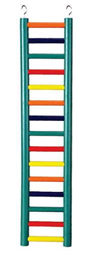 Prevue Pet Products BPV01139 Carpenter Creations Hardwood Bird Ladder with 15 Rungs, 24-Inch, Colors Vary