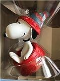 NEW Hallmark 2019 Peanuts SNOOPY On TUBING