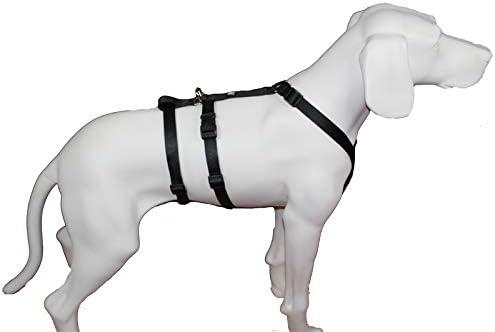 noexit arnés para perro negro, ideal para perro anxieux y pánico ...