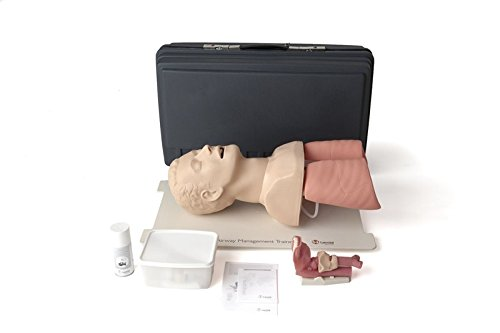 Laerdal 25000033 Airway Management Trainer ()