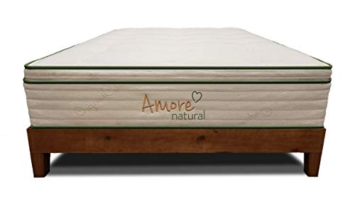 (Amore Beds Natural Pillow-Top Hybrid Mattress with Organic Latex (13