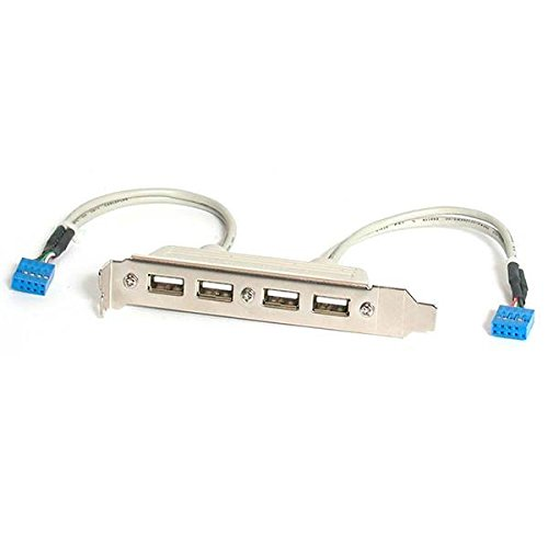 StarTech.com 4 Port USB A Female Slot Plate Adapter (USBPLATE4) (Pentium Audio Motherboard)