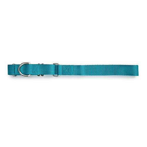 Guardian Gear Nylon Martingale Dog Collar, Fits Necks 18
