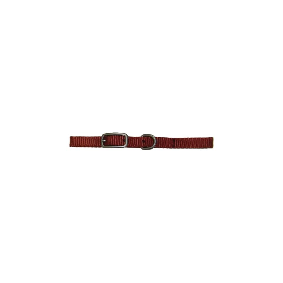 Hamilton 3/8 Inch by 10 Inch Single Thick Nylon Deluxe Dog Collar, Brick Red