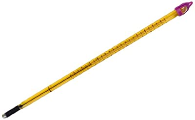 Thomas Precision General Purpose Liquid-In-Glass Thermometer