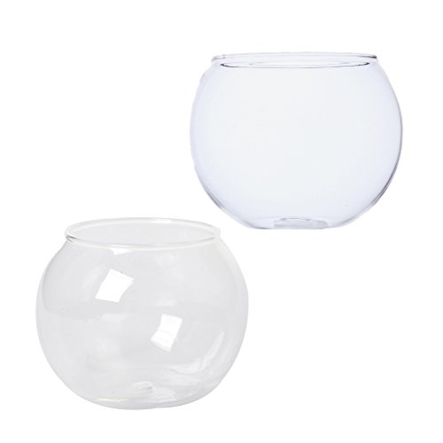 MagiDeal 2 Pieces Glass Bubble Bowl Tabletop Flower Vases Fish Tank Ball Bowl Plants Terrarium Container by MagiDeal