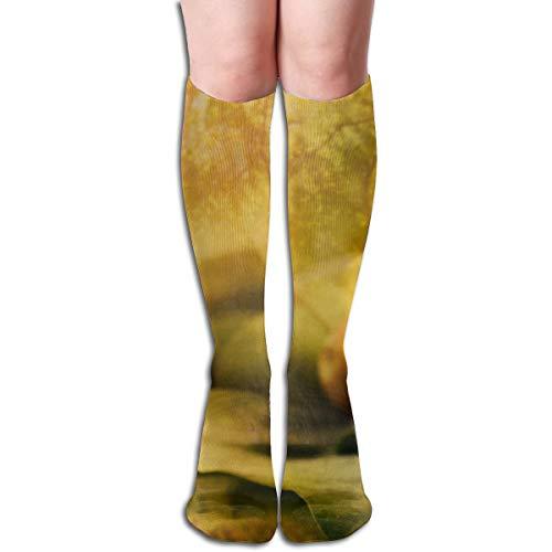 Agilitynoun Women's Socks Knee High Thigh Long Stocking Nuts Winter Warm Sexy Stocks