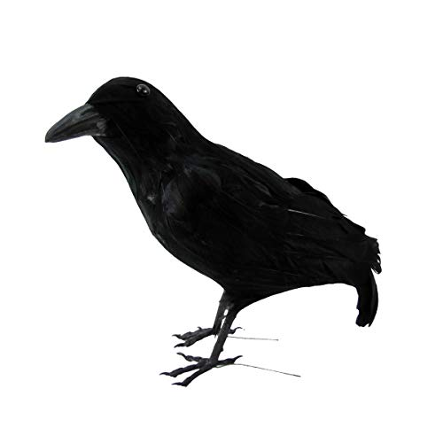 TG,LLC Black Lifesize Raven Movie Prop Crow Halloween Decoration Accessory Hunting Decoy -