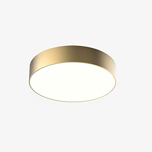 Gold Ceiling Light - Wylolik Modern Ceiling Lamp 24W LED Lamp 15-Inch Gold Matte Finish Round Flush Mount Acrylic Lampshade Lighting Fixture Steel Simple Kitchen Light Fixture for Dining Room Bedroom Office White Light 60