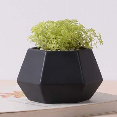 Amazon.com: Kucus – Macetas de cerámica para decoración de ...