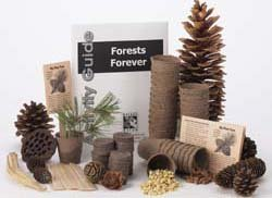 - Forests Forever Tree-Growing Science Kit (makes 25 projects)