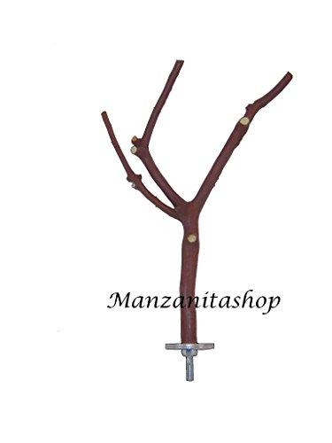 Small Manzanita Bird Perch (7